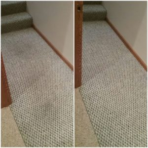 2-carpet-cleaning-washington-il