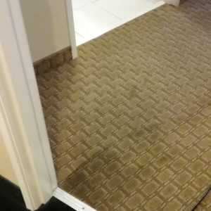 3-carpet-cleaning-washington-il