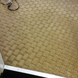 4carpet-cleaning-washington-il