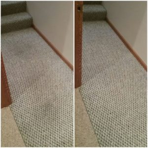 9-carpet-cleaning-washington-il